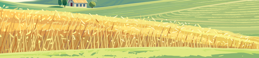 Image of an illustrated wheat field
